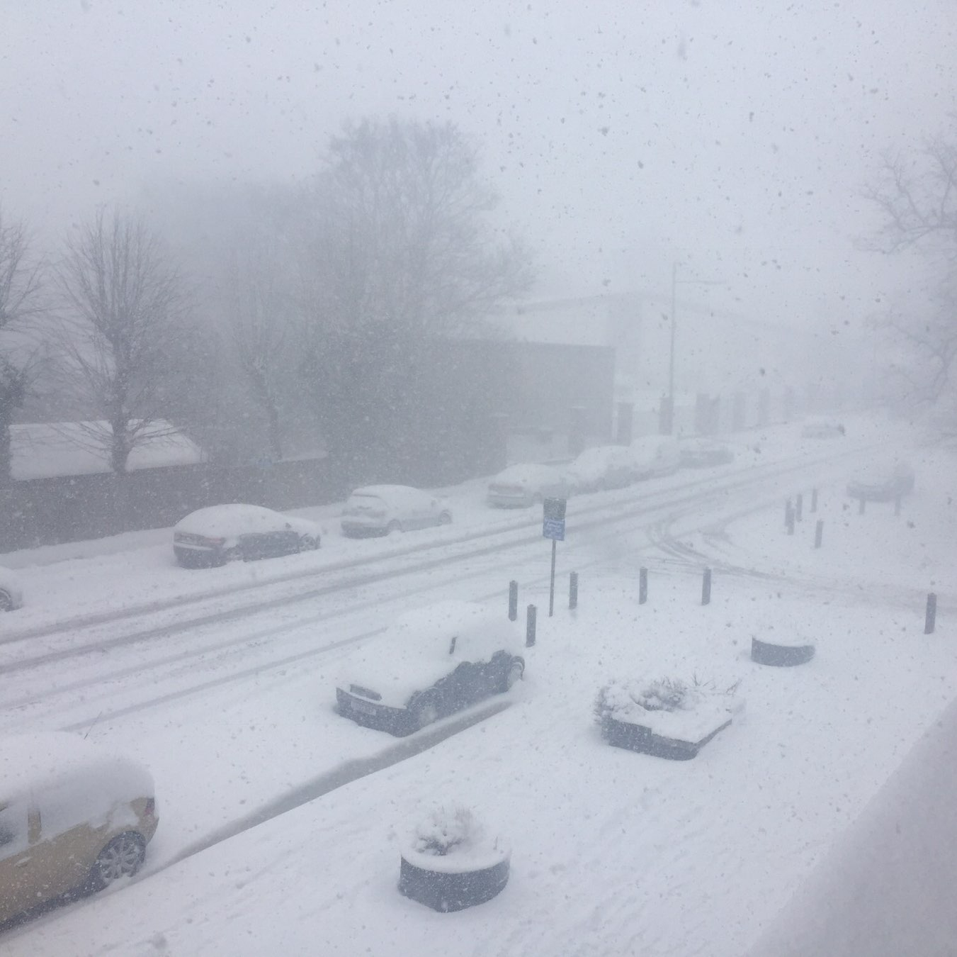 1 hour after snow plow took the road to black  Snowing hard…  |