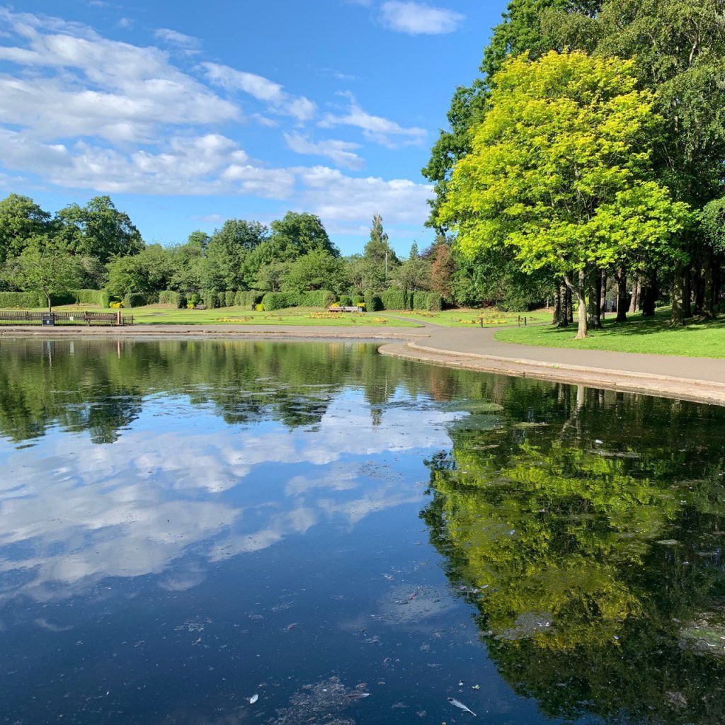 Victoria park pond. Tree and cloud reflections