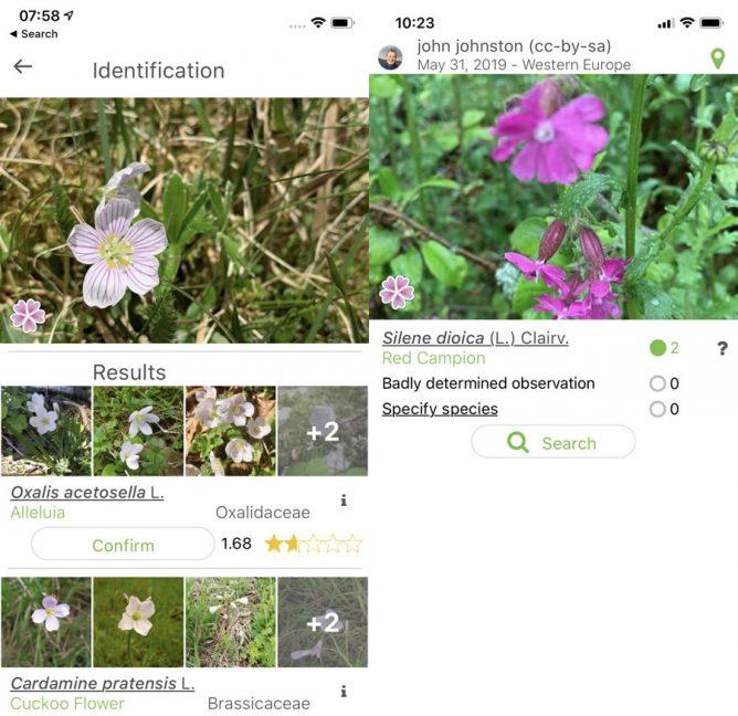 Screenshots of pl@nt app