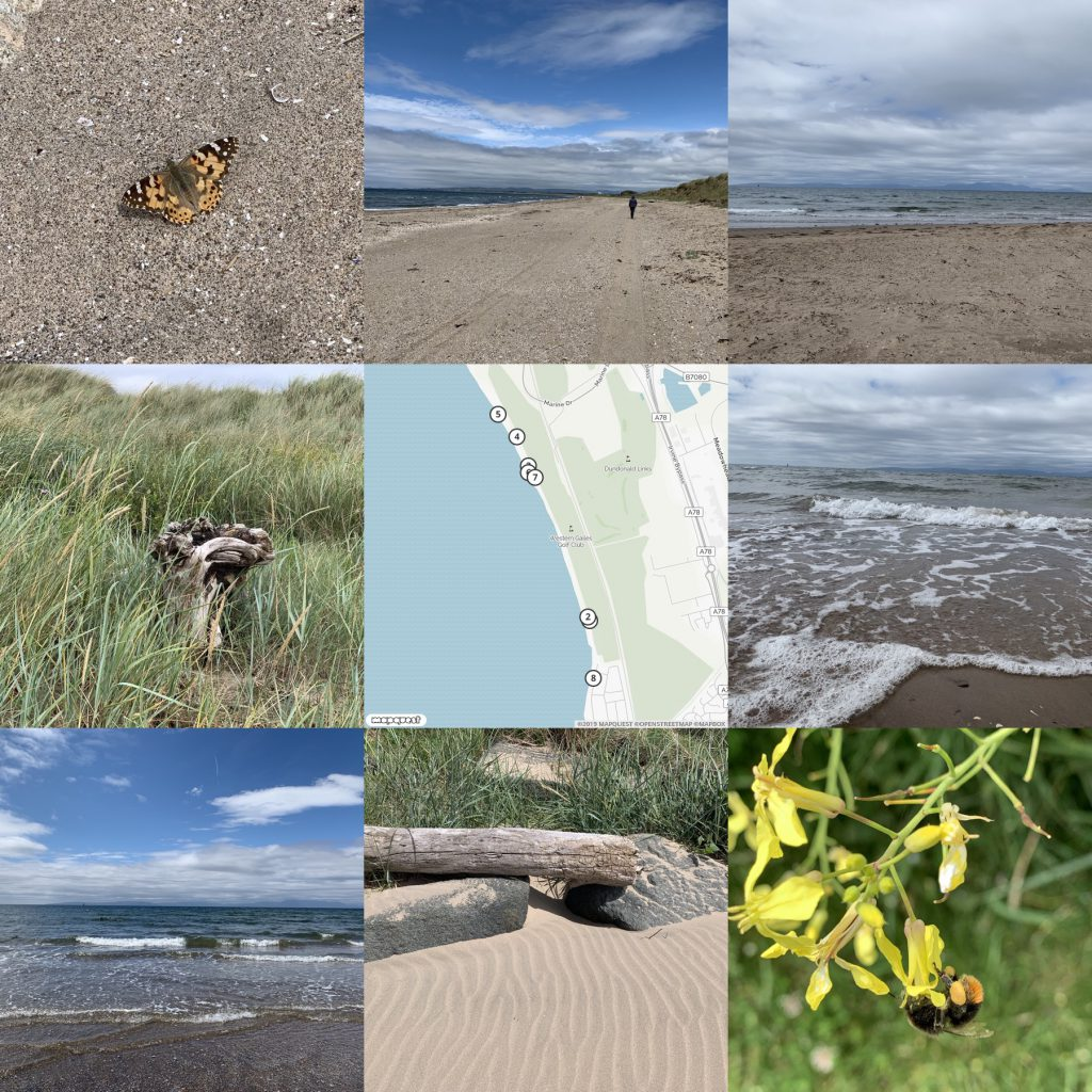montage of photos from beach around map.
