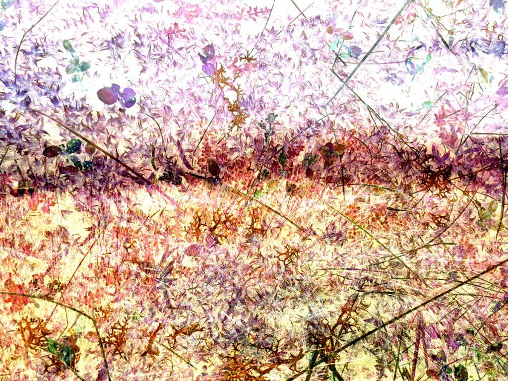 imagemagick multiexposure, subtract