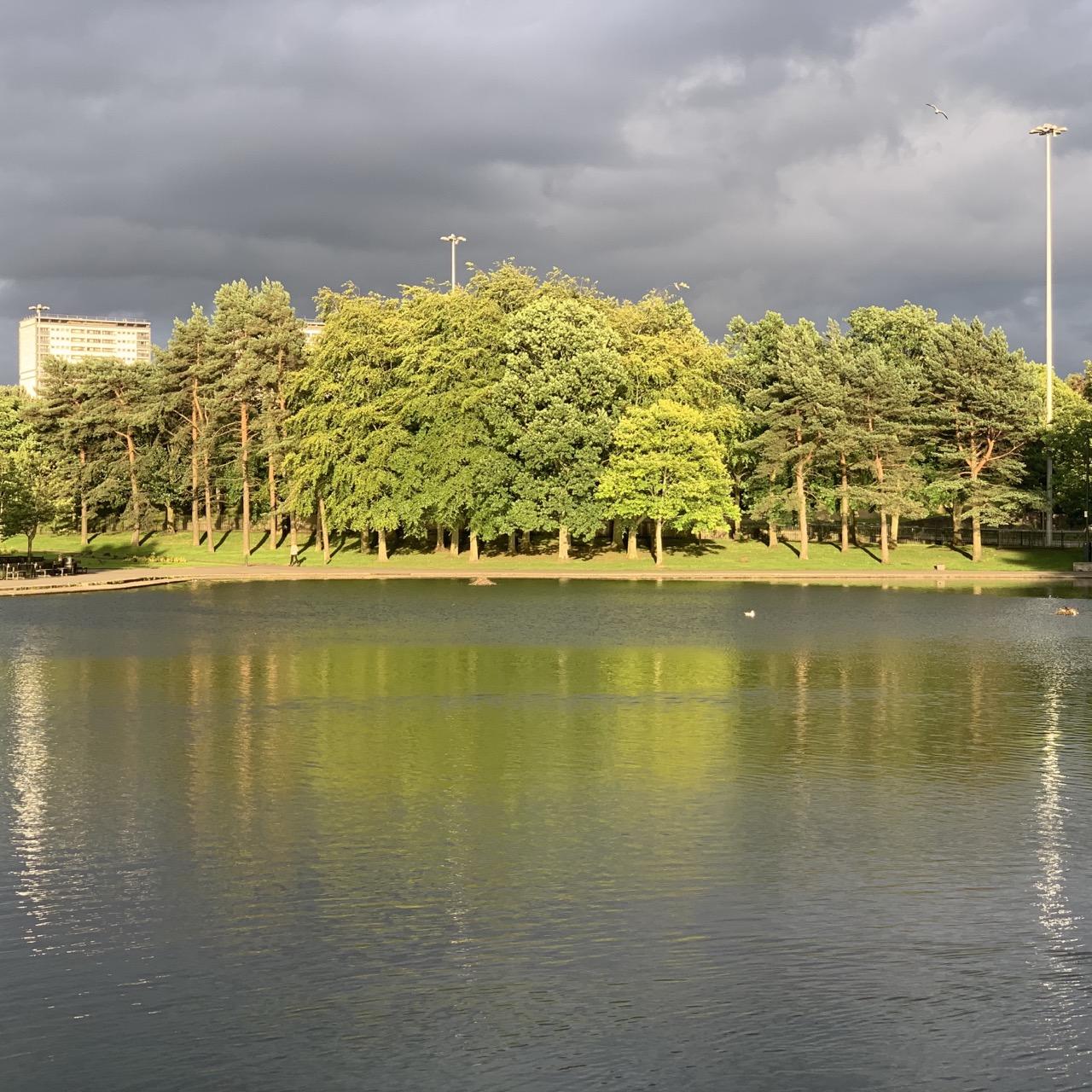 Victoria Park Pond, dark clouds, bright light on trees