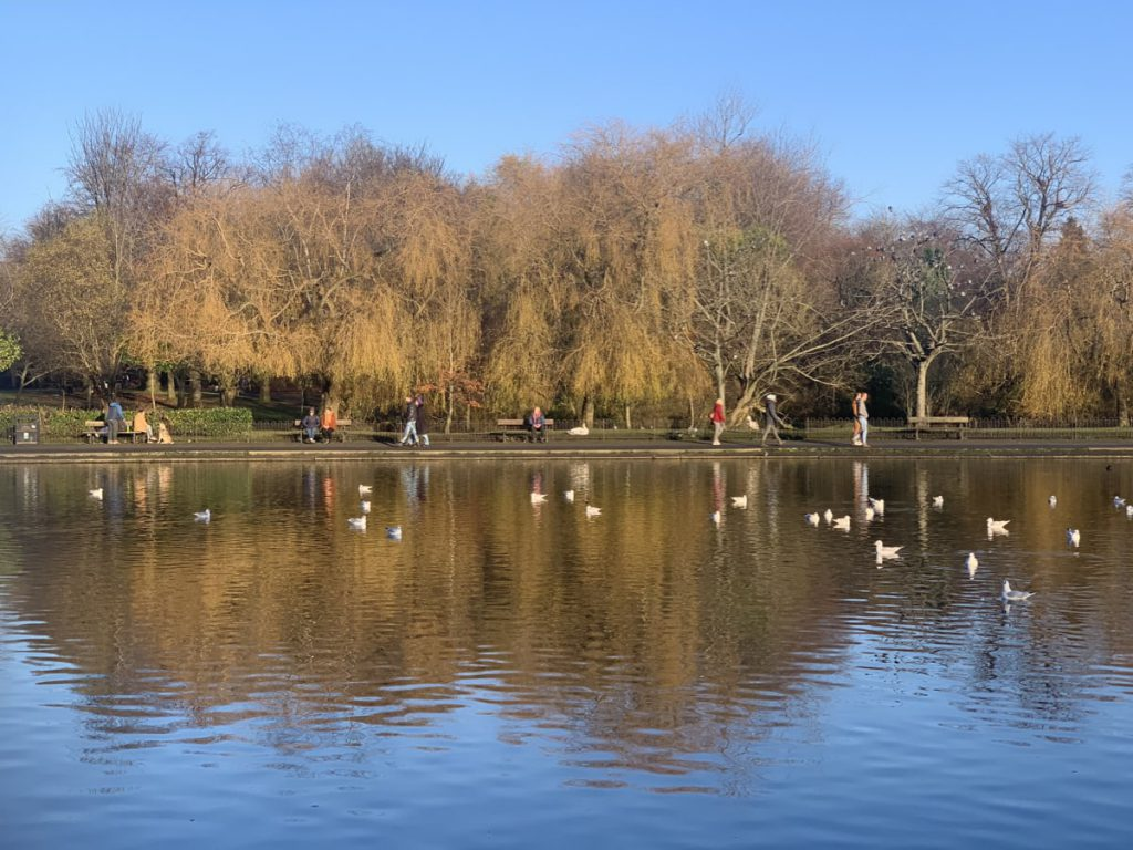 Victoria Park Pond, Bright November Day